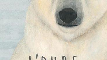 chronique de l'album jeunesse l'ours polaire