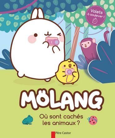 Critique de l'album jeunesse molang ou sont caches les animaux