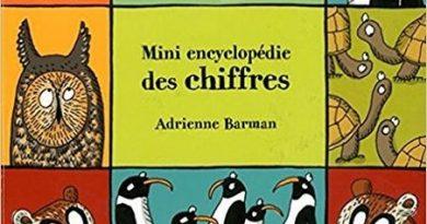 chronique de l'album jeunesse mini encyclopédie des chiffres.