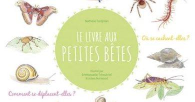 chronique de l'album jeunesse Le Livre aux petites bêtes