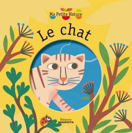 Chronique de l'album jeunesse le chat