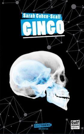 chronique du roman Gingo
