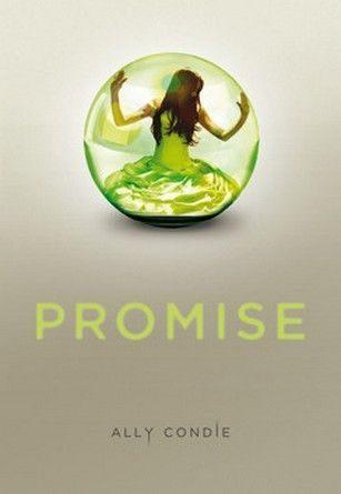 Chronique du roman Promise