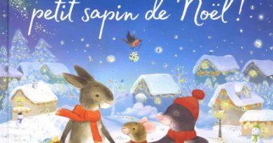 Chronique de l'album jeunesse Brille, brille petit sapin de Noël!