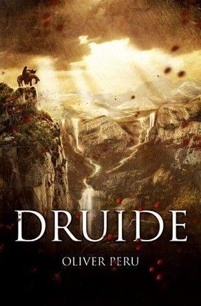 Chronique du roman Druide.