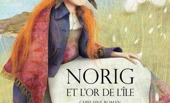 Chronique de l'album jeunesse Norig et le trésor de l'île