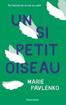 Chronique du roman Un si petit oiseau.