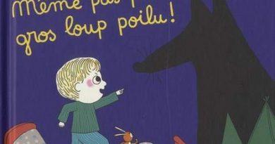 Chronique de l'album jeunesse Max et Lapin - Même pas peur gros loup poilu!
