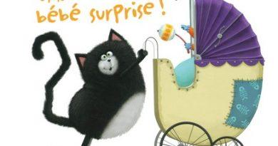 Chronique de l'album jeunesse Splat et le bébé surprise !