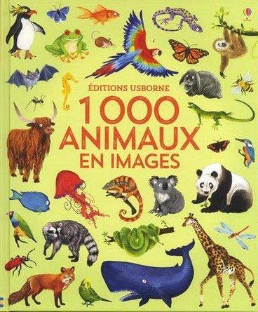 Chronique de l'album jeunesse 1000 animaux en images