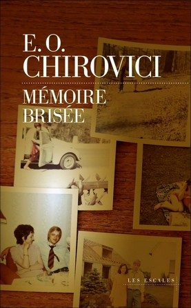 Chronique du roman Mémoire brisée