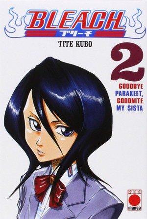 Chronique du manga Bleach #2