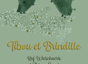 Chronique de l'album jeunesse Tibou et Brindille