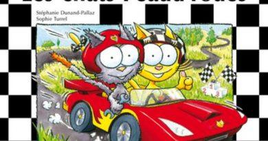 Chronique de l'album jeunesse Les chats Peaud'roues