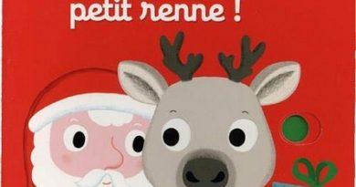 Chronique de l'album jeunesse Joyeux Noël petit renne