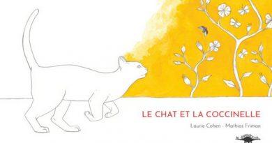 Chronique de l'album jeunesse Le chat et la coccinelle