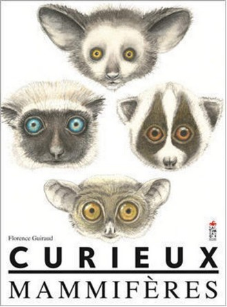 Chronique de l'album documentaire Curieux mammifères