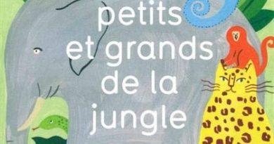 Chronique de l'album jeunesse Petits et grands de la jungle