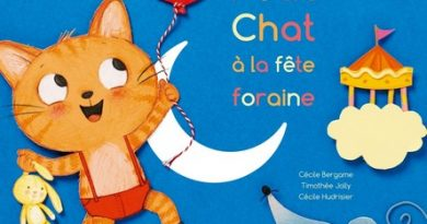 Chronique de l'album jeunesse Petit Chat à la fête foraine